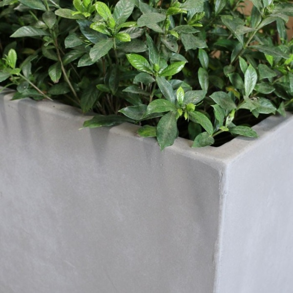 concrete planter close up raw