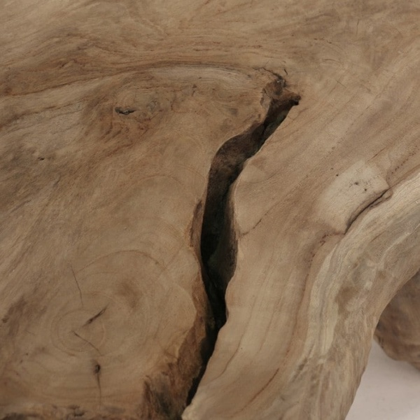 Nature reclaimed teak table top close up
